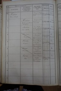 Piwkos in the Brześć Kujawski Book of Residents